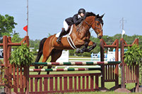 Equestrian Centers around Charlotte